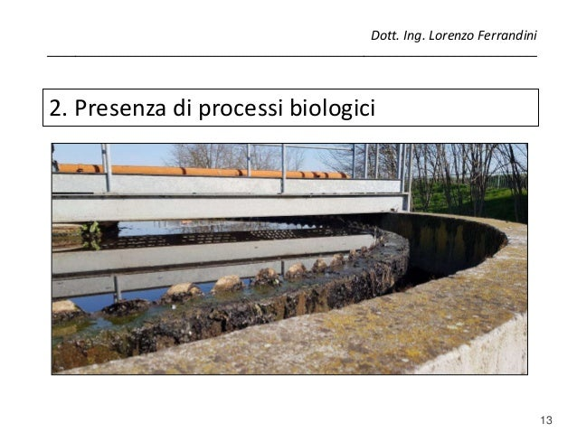 13 2. Presenza di processi biologici Dott. Ing. Lorenzo Ferrandini _______________________________________________________...