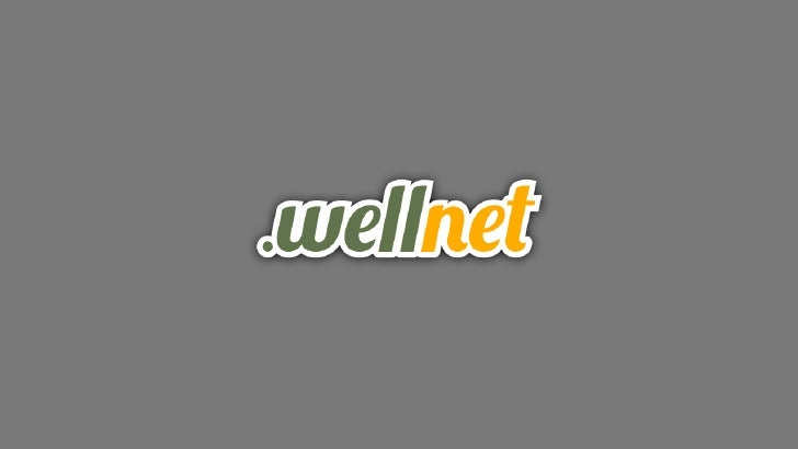 Caso di studio: Restyle eArchitettura dell'Informzione         di wellnet.it