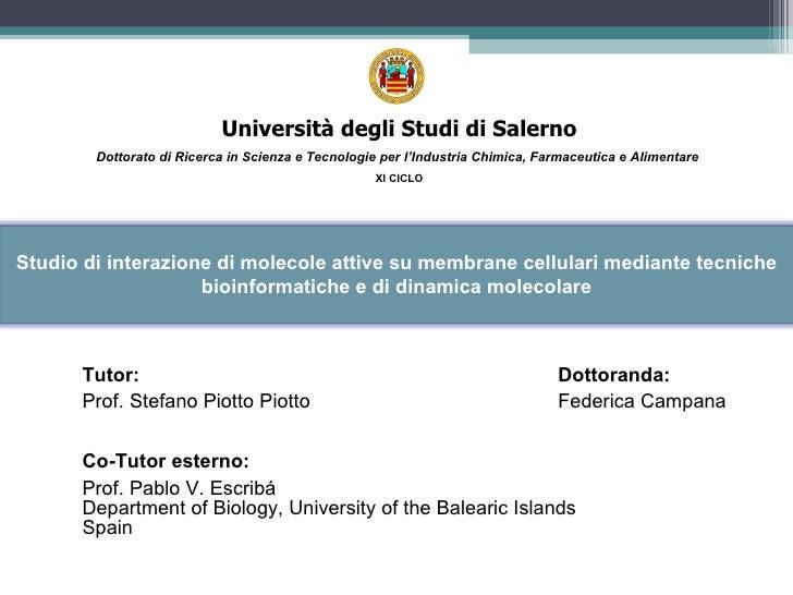 <ul><ul><ul><li>Tutor: Dottoranda: </li></ul></ul></ul><ul><ul><ul><li>Prof. Stefano Piotto Piotto   Federica Campana </li...