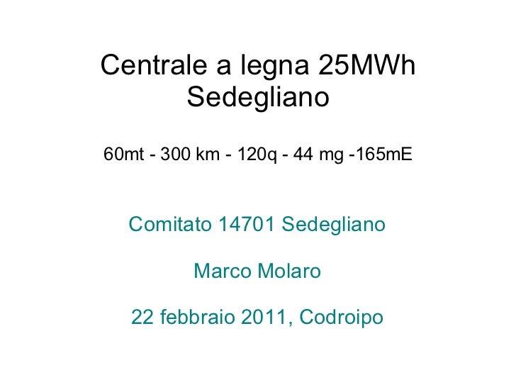 Centrale a legna 25MWh Sedegliano 60mt - 300 km - 120q - 44 mg -165mE Comitato 14701 Sedegliano Marco Molaro 22 febbraio 2...