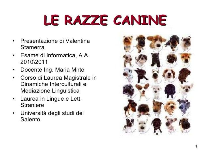 LE RAZZE CANINE <ul><li>Presentazione di Valentina Stamerra </li></ul><ul><li>Esame di Informatica, A.A 20102011 </li></ul...