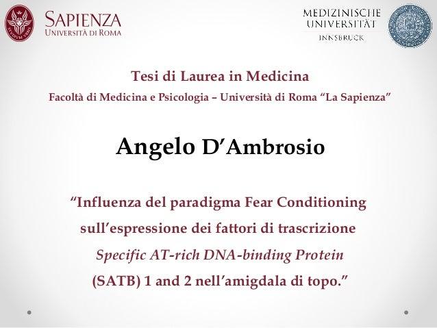 """Tesi di Laurea in Medicina Facoltà di Medicina e Psicologia – Università di Roma """"La Sapienza""""  Angelo D'Ambrosio """"Influen..."""