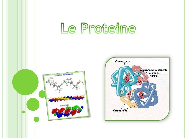 Le Proteine<br />