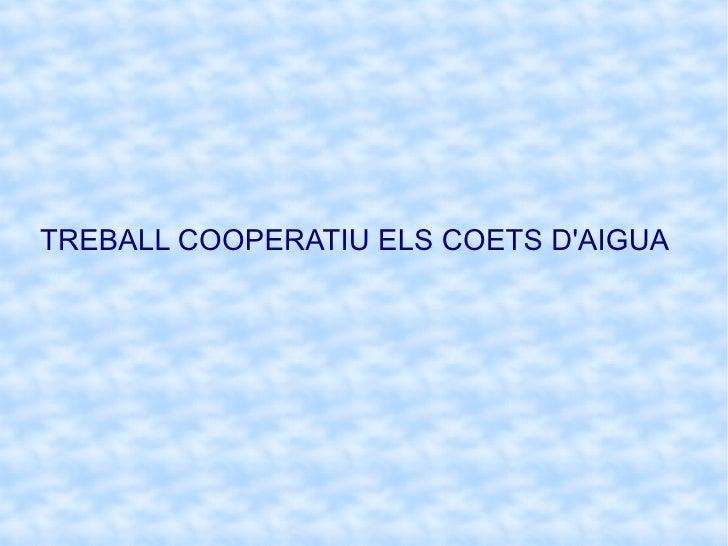 TREBALL COOPERATIU ELS COETS D'AIGUA
