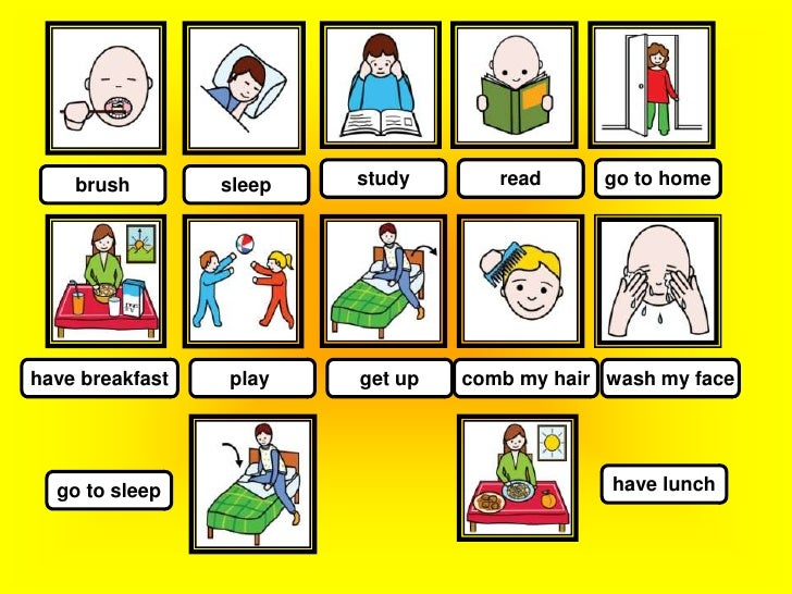 simple and action verbs