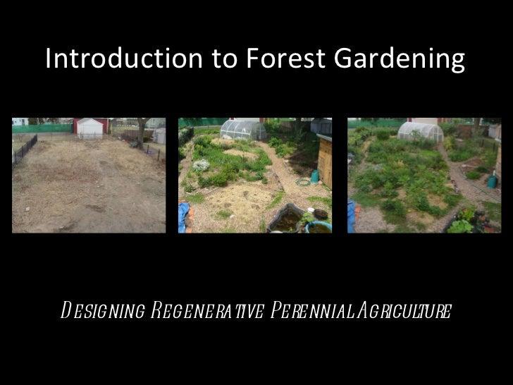 Introduction to Forest Gardening <ul><li>Designing Regenerative Perennial Agriculture </li></ul>