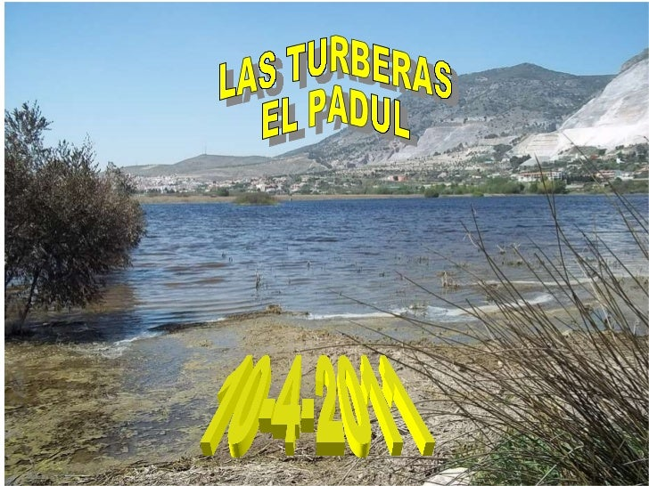 LAS TURBERAS EL PADUL 10-4-2011