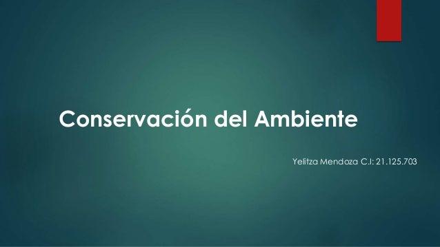 Conservación del Ambiente Yelitza Mendoza C.I: 21.125.703