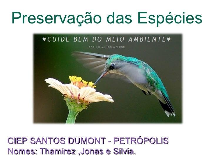 Preservação das Espécies CIEP SANTOS DUMONT - PETRÓPOLIS Nomes: Thamirez ,Jonas e Silvia.
