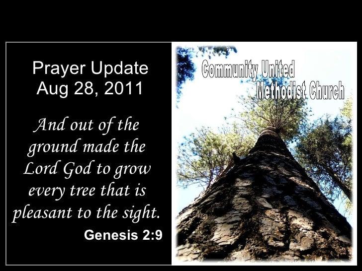 Prayer Update Aug 28, 2011 <ul><li>And out of the ground made the Lord God to grow every tree that is pleasant to the sigh...