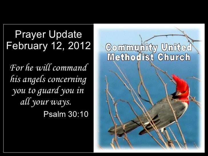 Prayer Update February 12, 2012 <ul><li>For he will command his angels concerning you to guard you in all your ways.  </li...