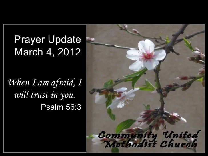 Prayer Update March 4, 2012When I am afraid, I will trust in you.        Psalm 56:3