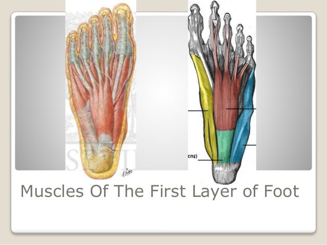 Sole of foot