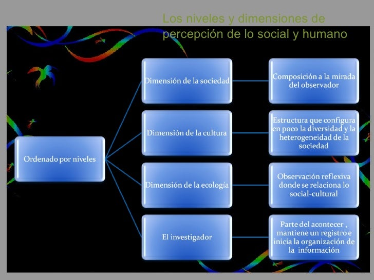 Los niveles y dimensiones de  percepción de lo social y humano