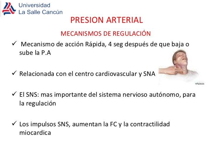 Hipertensión portal Guía para comunicar el valor