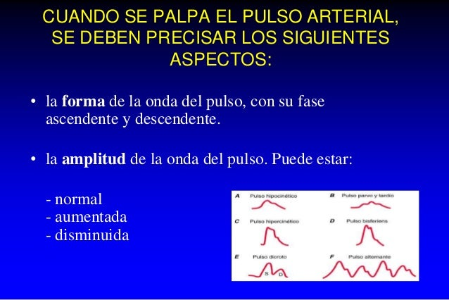 CUANDO SE PALPA EL PULSO ARTERIAL, SE DEBEN PRECISAR LOS SIGUIENTES ASPECTOS: • la forma de la onda del pulso, con su fase...