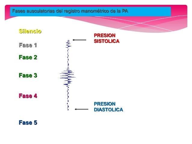  Actualmente existen esfigmomanómetros electrónicos, más caros pero más fáciles de usar ya que utilizan estetoscopio para...