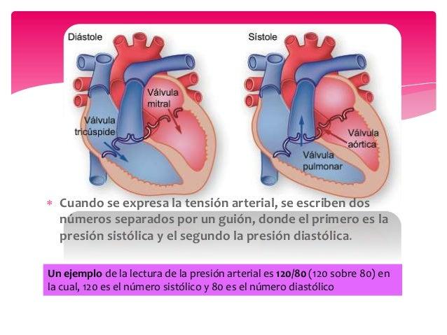 Un ejemplo de la lectura de la presión arterial es 120/80 (120 sobre 80) en la cual, 120 es el número sistólico y 80 es el...