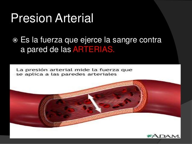 Presion arterial sistemica