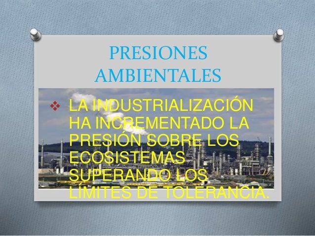 PRESIONES  AMBIENTALES   LA INDUSTRIALIZACIÓN  HA INCREMENTADO LA  PRESIÓN SOBRE LOS  ECOSISTEMAS  SUPERANDO LOS  LÍMITES...