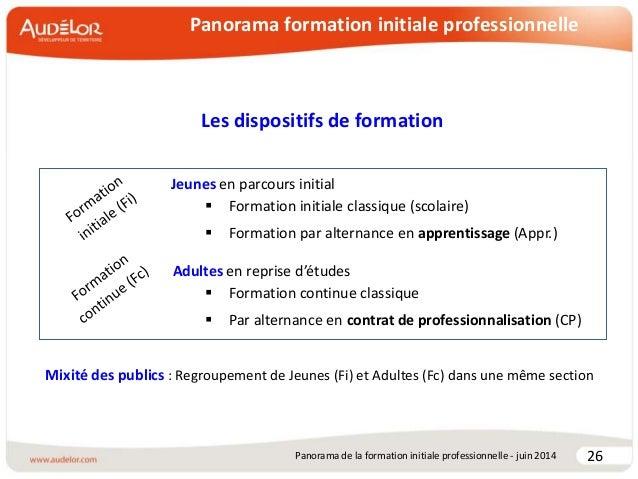 Panorama de la formation initiale professionnelle au Pays ...