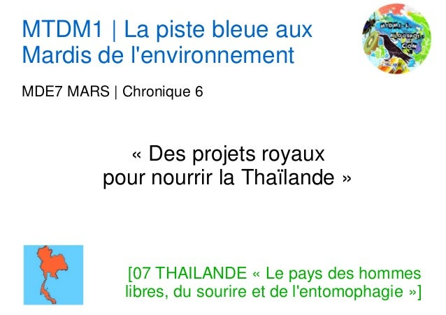 MTDM1 | La piste bleue auxMardis de lenvironnementMDE7 MARS | Chronique 6            « Des projets royaux          pour no...