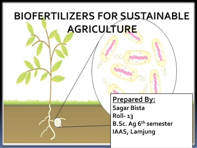 biofertilizersimportance-and-uses-1-638 Block Diagram Definition on
