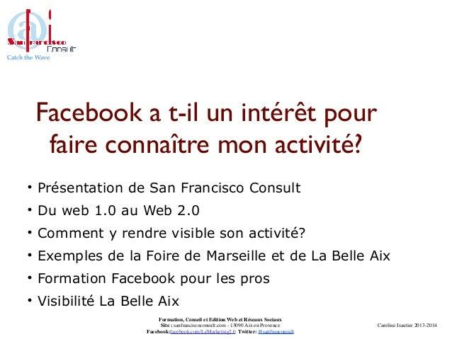Catch the Wave Caroline Isautier 2013-2014 Formation, Conseil et Edition Web et Réseaux Sociaux Site : sanfranciscoconsult...