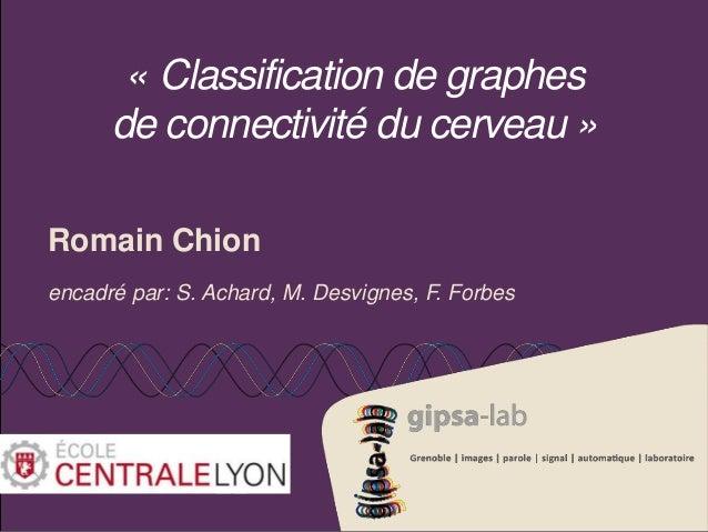 « Classification de graphes  de connectivité du cerveau »  Romain Chion  encadré par: S. Achard, M. Desvignes, F. Forbes
