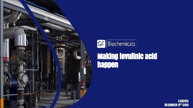 Making levulinic acid happen CASERTA DECEMBER 9TH 2015