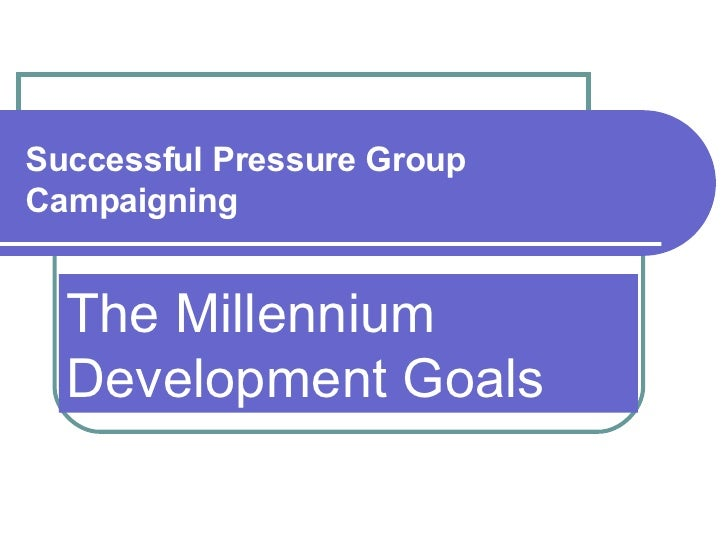 Successful Pressure Group Campaigning The Millennium Development Goals