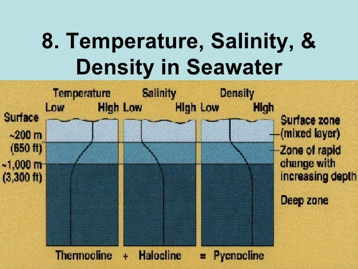 8. Temperature, Salinity, & Density in Seawater