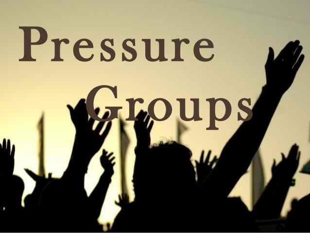 Pressure groups in the u s a