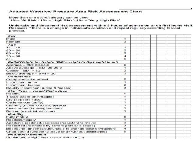 Waterlow score Essay Dissertation Help