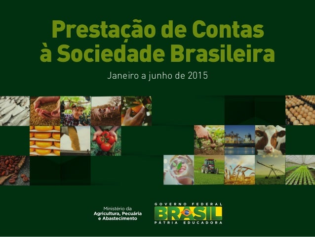 Prestação de Contas à Sociedade Brasileira Janeiro a junho de 2015
