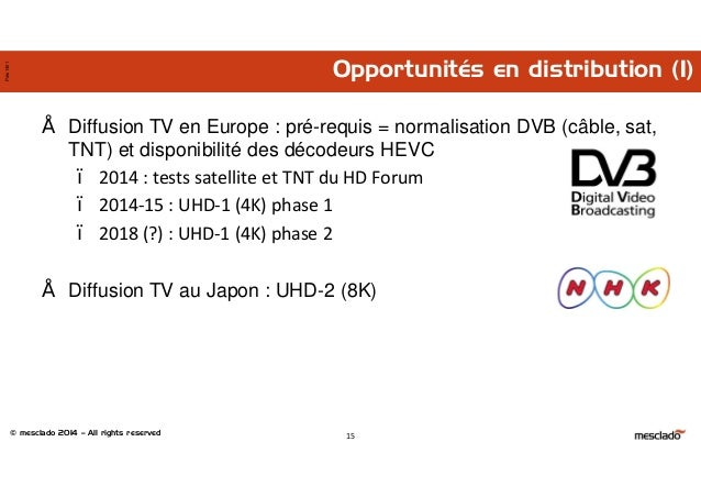 © mesclado 2014 – All rights reserved Pres1401 Opportunités en distribution (1) 15 • Diffusion TV en Europe : pré-requis =...