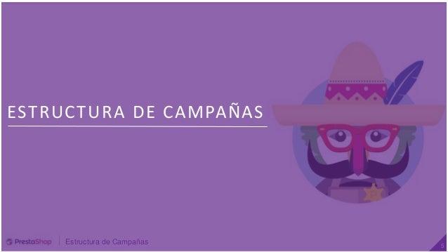 Estructura de Campañas 5 ESTRUCTURA DE CAMPAÑAS