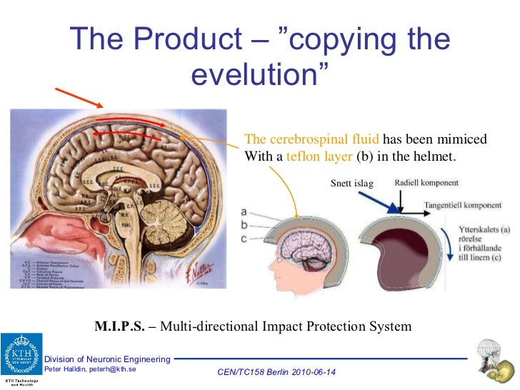 """The Product – """"copying the evelution"""" The cerebrospinal fluid  has been mimiced With a  teflon layer  (b) in the helmet. S..."""