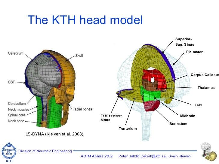 The KTH head model LS-DYNA (Kleiven et al. 2008) Superior- Sag. Sinus Pia mater Corpus Callosum Thalamus Falx Midbrain Bra...