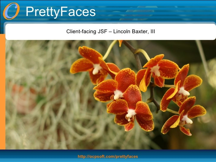 PrettyFaces Client-facing JSF – Lincoln Baxter, III