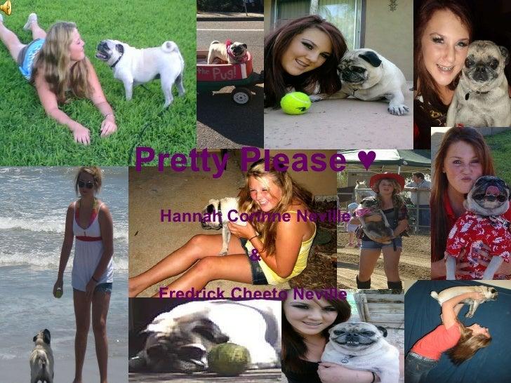 Pretty Please ♥ Hannah Corinne Neville & Fredrick Cheeto Neville