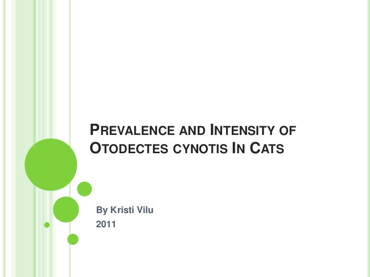 PREVALENCE AND INTENSITY OFOTODECTES CYNOTIS IN CATSBy Kristi Vilu2011
