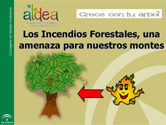 Los Incendios Forestales, unaamenaza para nuestros montes