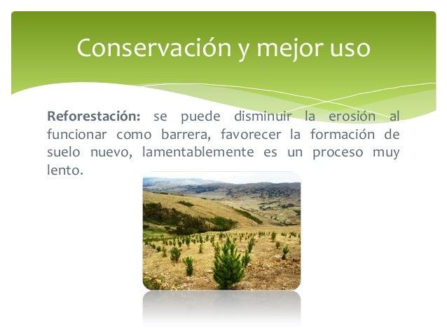 Prevenci n y control de la contaminaci n del suelo for Proceso de formacion del suelo