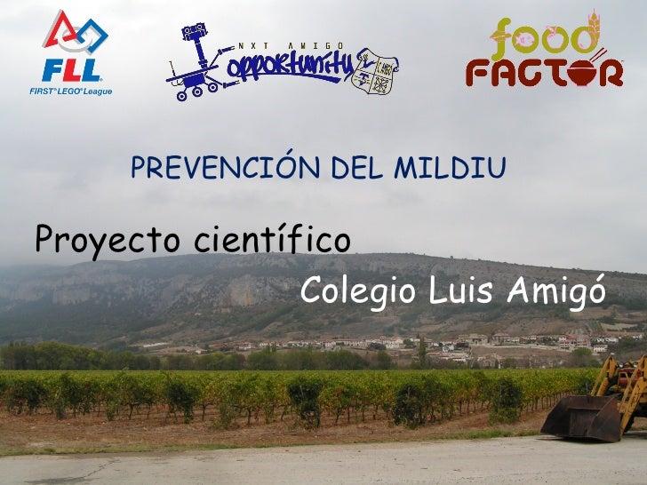 Proyecto científico   Colegio Luis Amigó PREVENCIÓN DEL MILDIU