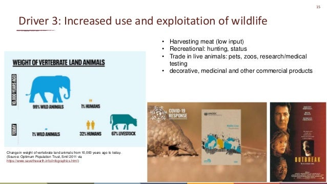 15 Driver 3: Increased use and exploitation of wildlife Change in weight of vertebrate land animals from 10,000 years ago ...