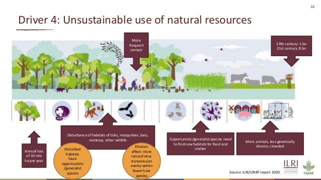 16 Driver 4: Unsustainable use of natural resources Annual loss of 10 mio ha per year Disturbance of habitats of ticks, mo...