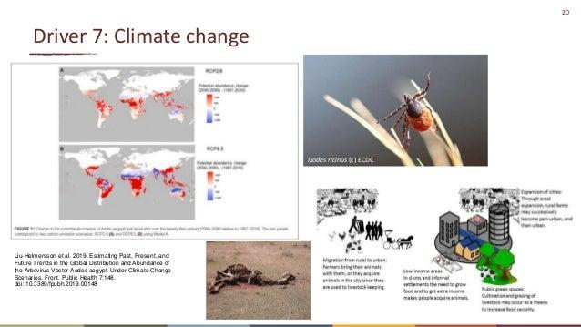 20 Driver 7: Climate change Ixodes ricinus (c) ECDC Liu-Helmersson et al. 2019. Estimating Past, Present, and Future Trend...