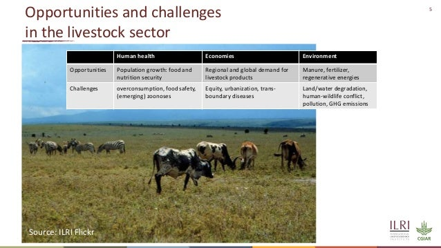 5 Opportunities and challenges in the livestock sector Human health Economies Environment Opportunities Population growth:...