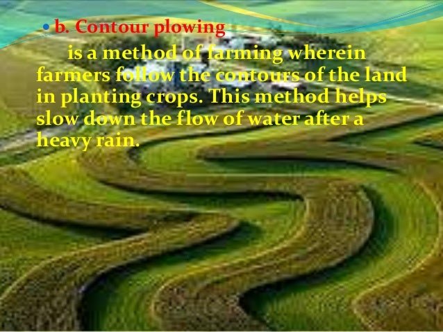 c. Strip cropping      is a method of planting crops in strips  of land. In this method, two or more  crops are planted al...